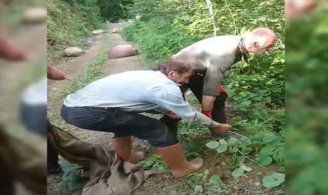 İşçiler yamaçtan yuvarlanan çay terisi için seferber oldu