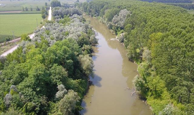 Atık sularla kirlenen Sakarya Nehri havadan görüntülendi