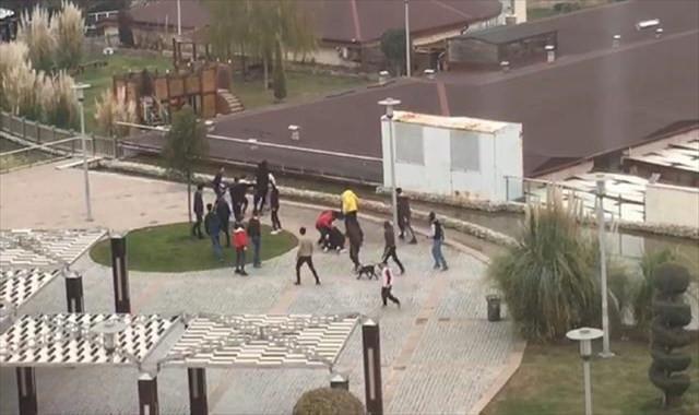 Gençlerin kavgası kamerada