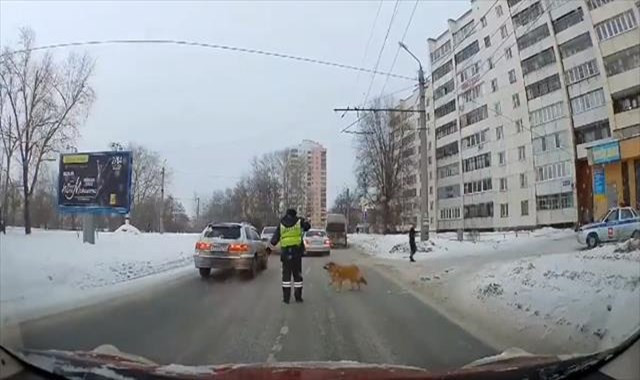 Köpeğin yardımına polis koştu